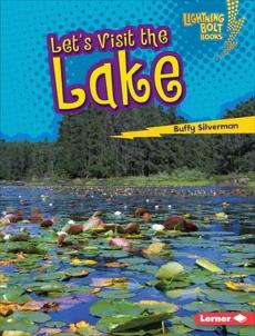 Let's Visit the Lake, Silverman, Buffy