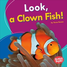 Look, a Clown Fish!, Kenan, Tessa