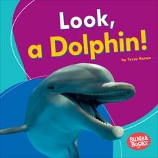 Look, a Dolphin!, Kenan, Tessa