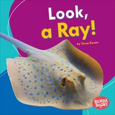 Look, a Ray!, Kenan, Tessa
