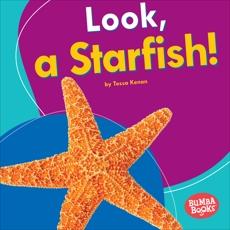 Look, a Starfish!, Kenan, Tessa