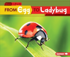 From Egg to Ladybug, Owings, Lisa