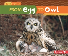 From Egg to Owl, Boothroyd, Jennifer