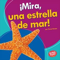 ¡Mira, una estrella de mar! (Look, a Starfish!), Kenan, Tessa