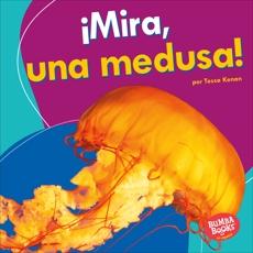 ¡Mira, una medusa! (Look, a Jellyfish!), Kenan, Tessa