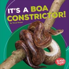It's a Boa Constrictor!, Kenan, Tessa