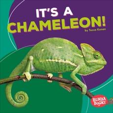 It's a Chameleon!, Kenan, Tessa