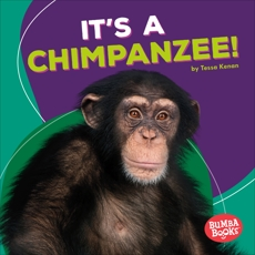 It's a Chimpanzee!, Kenan, Tessa