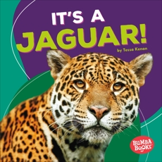 It's a Jaguar!, Kenan, Tessa