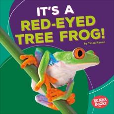 It's a Red-Eyed Tree Frog!, Kenan, Tessa