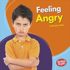 Feeling Angry, Clark, Rosalyn