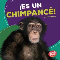 ¡Es un chimpancé! (It's a Chimpanzee!), Kenan, Tessa