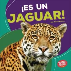 ¡Es un jaguar! (It's a Jaguar!), Kenan, Tessa