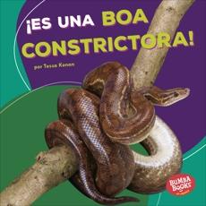 ¡Es una boa constrictora! (It's a Boa Constrictor!), Kenan, Tessa