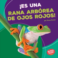¡Es una rana arbórea de ojos rojos! (It's a Red-Eyed Tree Frog!), Kenan, Tessa