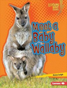 Meet a Baby Wallaby, Leigh, Anna