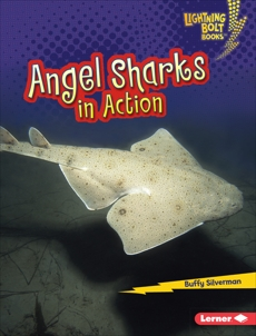 Angel Sharks in Action, Silverman, Buffy