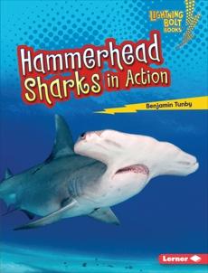 Hammerhead Sharks in Action, Tunby, Benjamin