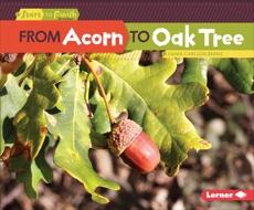 From Acorn to Oak Tree, Carlson-Berne, Emma