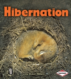 Hibernation, Nelson, Robin