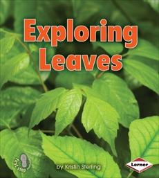 Exploring Leaves, Sterling, Kristin
