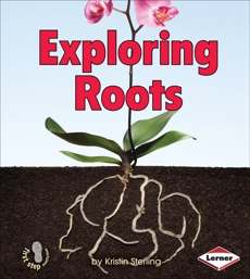 Exploring Roots, Sterling, Kristin