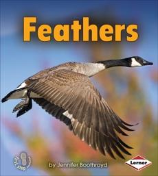 Feathers, Boothroyd, Jennifer