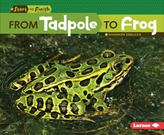 From Tadpole to Frog, Zemlicka, Shannon