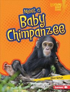 Meet a Baby Chimpanzee, Schuh, Mari