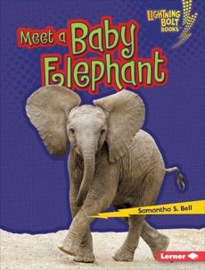 Meet a Baby Elephant, Bell, Samantha S.