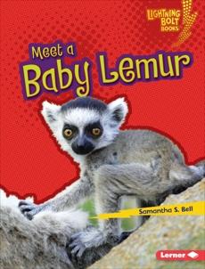 Meet a Baby Lemur, Bell, Samantha S.