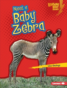 Meet a Baby Zebra, Owings, Lisa