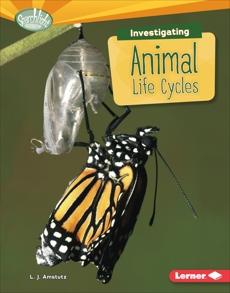 Investigating Animal Life Cycles, Amstutz, L. J.