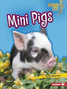 Mini Pigs, Silverman, Buffy