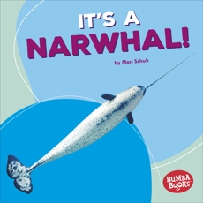It's a Narwhal!, Schuh, Mari