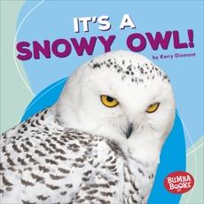 It's a Snowy Owl!, Dinmont, Kerry & Dinmont� Kerry