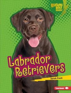 Labrador Retrievers, Frank, Sarah