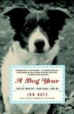 A Dog Year: Twelve Months, Four Dogs, and Me, Katz, Jon