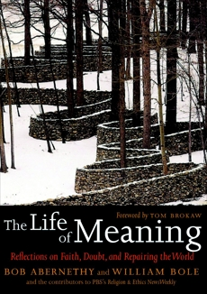 The Life of Meaning: Reflections on Faith, Doubt, and Repairing the World,