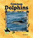 Common Dolphins, Murray, Julie