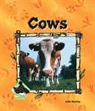 Cows, Murray, Julie