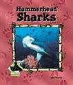 Hammerhead Sharks, Murray, Julie