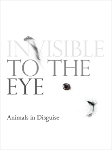 Invisible to the Eye: Animals in Disguise, World Book