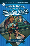 Foul Ball Frame-up at Wrigley Field, David Aretha