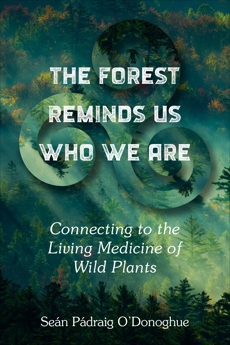 The Forest Reminds Us Who We Are: Connecting to the Living Medicine of Wild Plants
