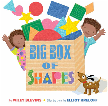 Big Box of Shapes, Blevins, Wiley