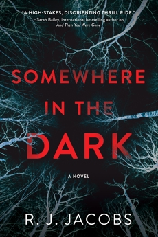 Somewhere in the Dark: A Novel, Jacobs, R. J.