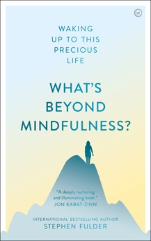 What's Beyond Mindfulness?: Waking Up to This Precious Life