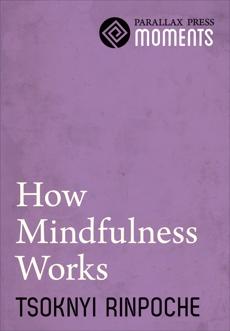 How Mindfulness Works, Rinpoche, Tsoknyi
