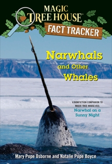 Narwhals and Other Whales: A nonfiction companion to Magic Tree House #33: Narwhal on a Sunny Night, Boyce, Natalie Pope & Osborne, Mary Pope